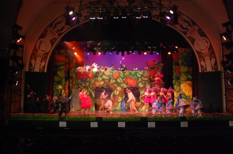 The Jungle Of Nool